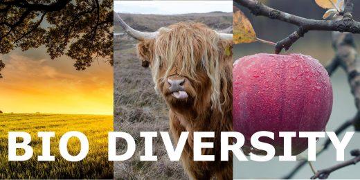 Meeting Italy Biodiversity