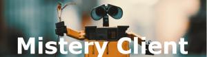 mistery client- indagine- survey